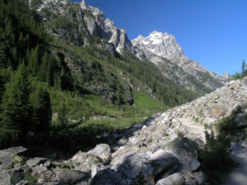 Heading up the Cascade Canyon Trail