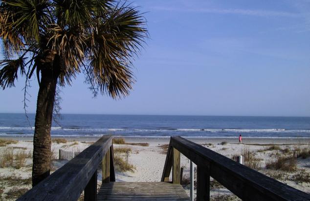 palmetto dunes
