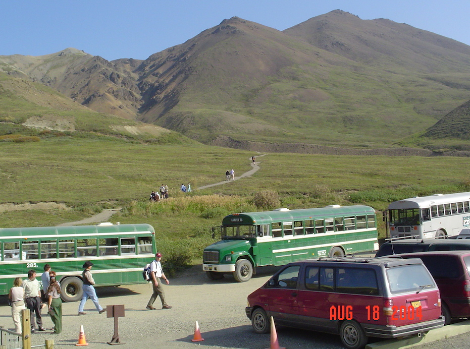 Typical buses at Denali