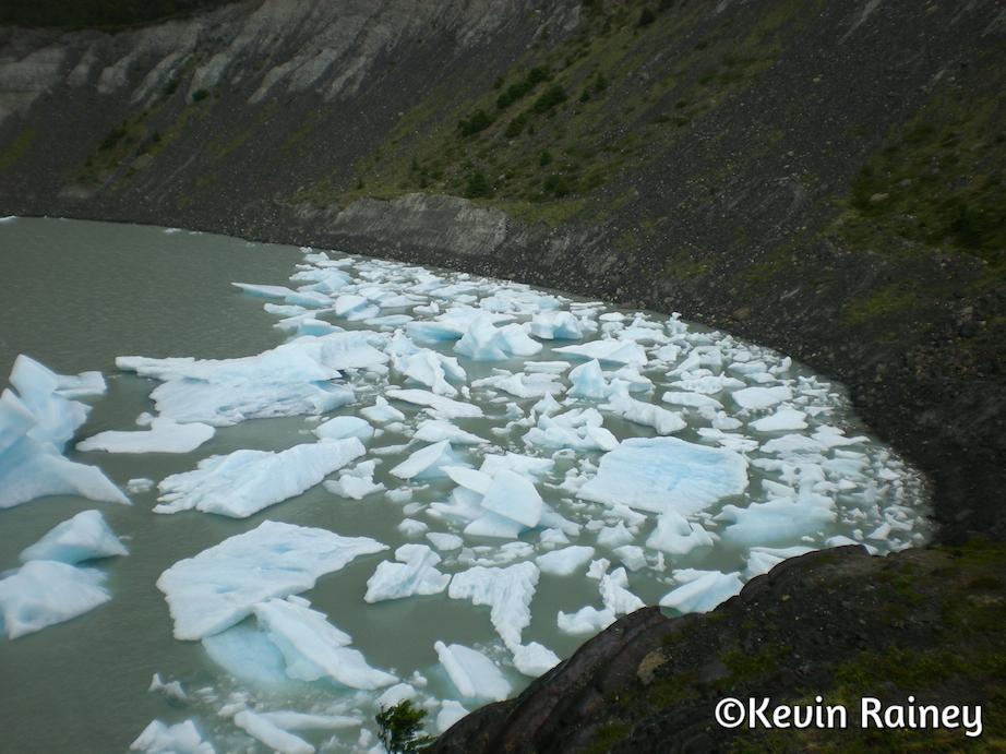 Pieces from Grey Glacier