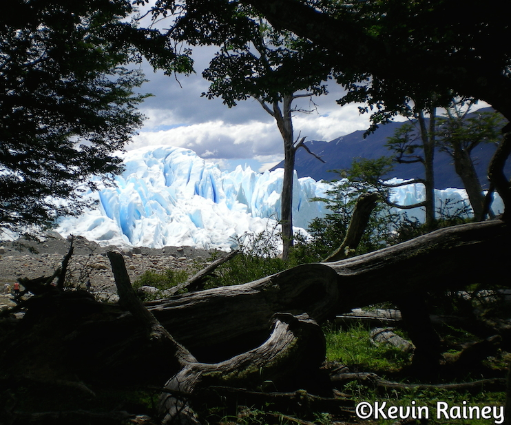 The stunning Perito Moreno  from the forrest