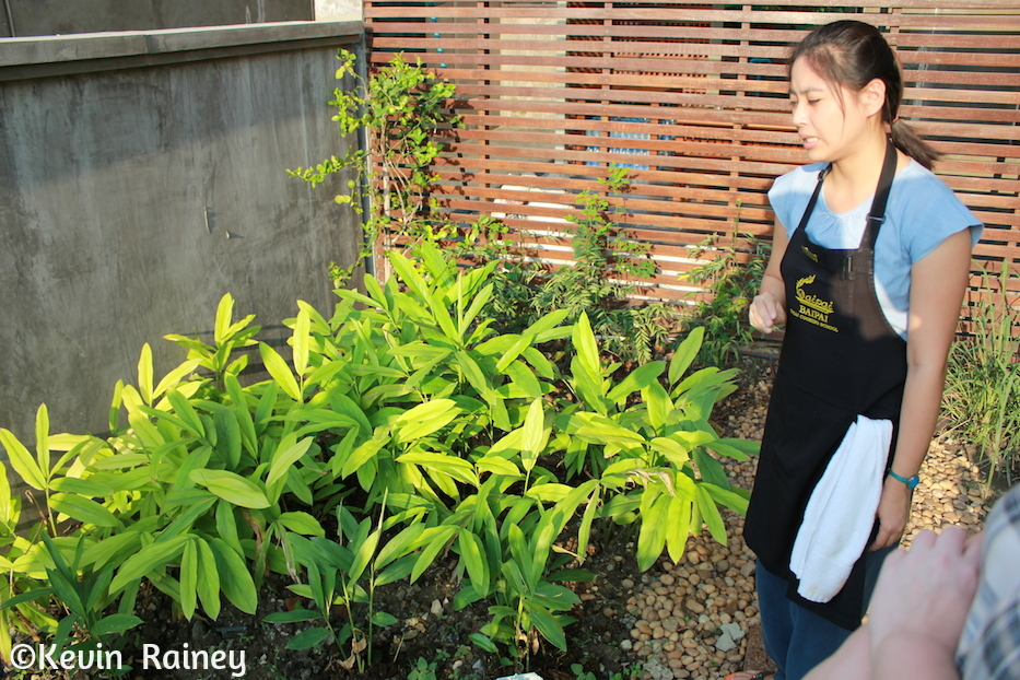 Home-grown ingredients at Bai Pai Cooking School